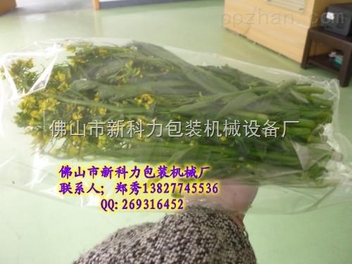 四川蔬菜包�b�C械